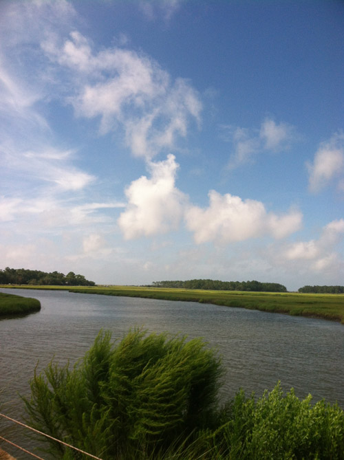 Carly-is-Inspired-Kiawah-Island-Love-9