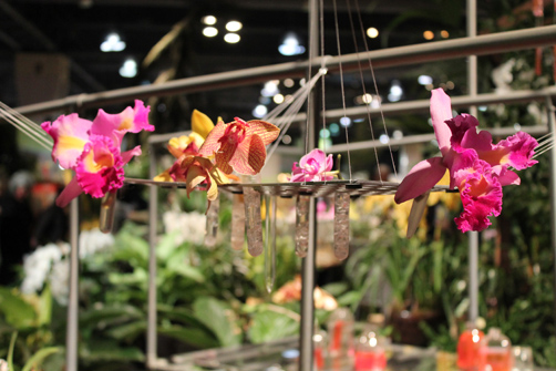 Carly-is-Inspired-Flower-Show-4