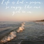 Inspired Ideas: Life is But a Season